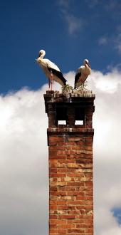 Dva čápi na komíně