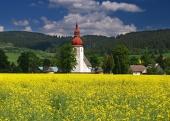 Louka a starý kostel