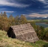 Starobylý dřevěný dům