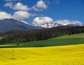 Žlutá louka a kopce na Liptově