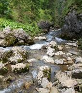Horský potok v Kvačianské údolí