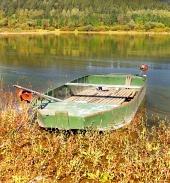 Rybářská veslice v rákosí na břehu přehrady Liptovská Mara