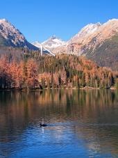 Podzim ve Vysokých Tatrách při Štrbském Plese