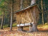 Krmítko připravené pro zvířata ve slovenském lese