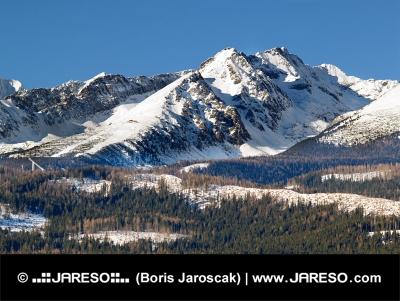 Vysoké Tatry a les během zimy