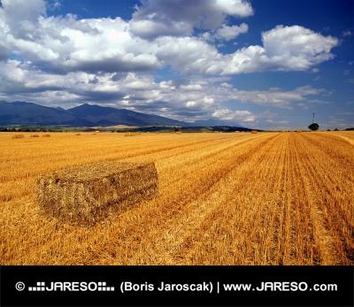 Balíky slámy a Liptovská krajina na Slovensku během léta