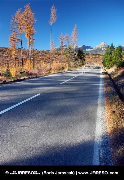 Cesta do Vysokých Tater od města Štrba na podzim