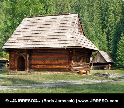 Vzácné dřevěnice v Zuberci