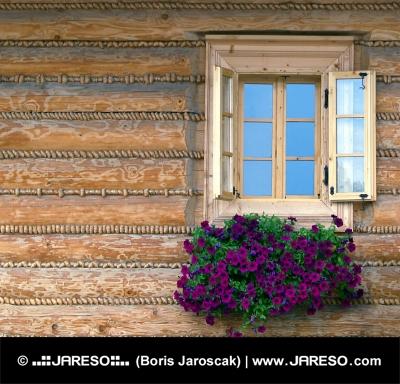 Okno dřevěnice s květinami