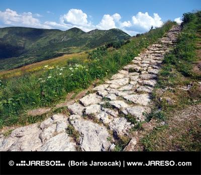 Turistická cesta na vrchol Chleb