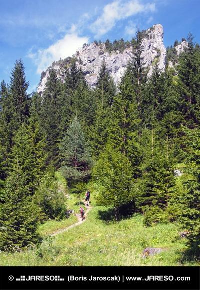 Skalní útvary ve Vrátné dolině, Slovensko