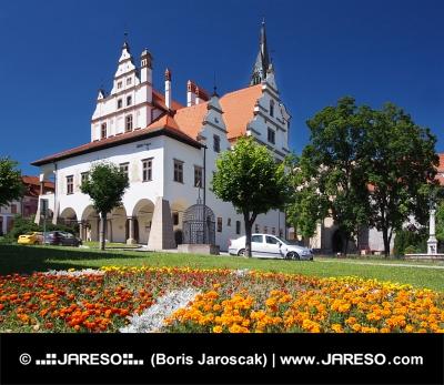 Květiny a radnice v Levoči na Slovensku