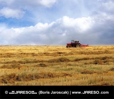 Traktor na žlutém poli
