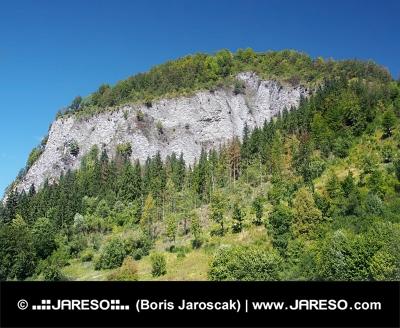 Bielska skála, Národní přírodní rezervace na Oravě