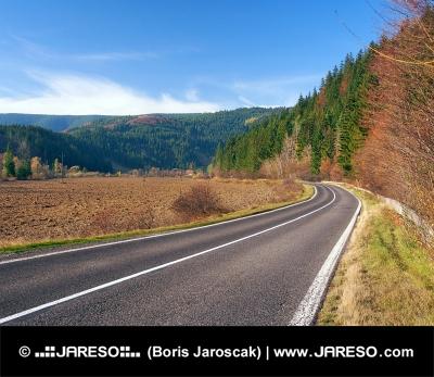 Cesta do obce Podbiel na Oravě