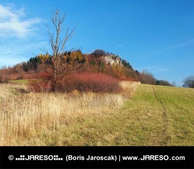 Podzim v lokalitě Vyšnokubínskych skalek