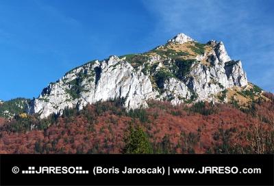 Podzimní pohled na Velký Rozsutec na Slovensku