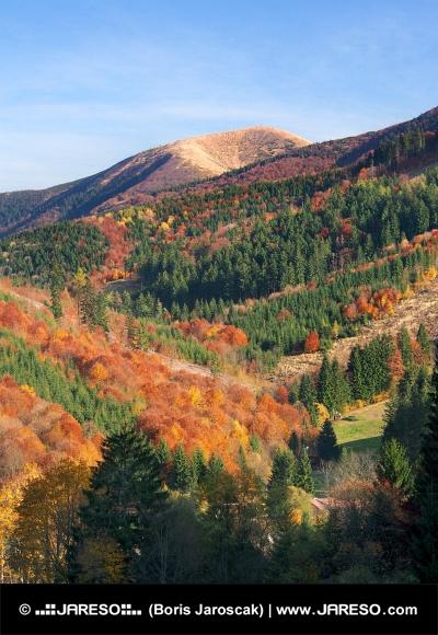Národní park Malá Fatra na podzim